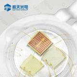 3W 3 em 1 Chip RGB LED de iluminação da paisagem