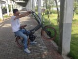 20インチのリチウム電池のFoldable自転車のEバイク
