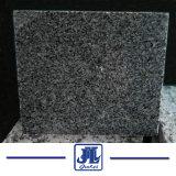 새로운 G654 까만 화강암 마루 또는 벽 클래딩 또는 층계 또는 단계 또는 수영장 극복 돌 도와 포석