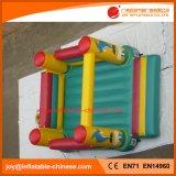 Dolfijn Inflatatable die Uitsmijter Moonwalk voor het Stuk speelgoed van Jonge geitjes (t1-305) springen