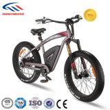 뚱뚱한 타이어 산 유형 E 자전거