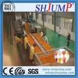 高い収穫および省エネのオレンジジュース実線の処理機械