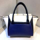 Le sac d'emballage le plus neuf de sac à main de femmes de collision de couleur pour le sac d'épaule de dames Sy8027