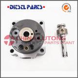 146403-4920 hoofdRotor voor Mitsubishi 4m40 - de Delen van de Dieselmotor
