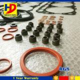 Rg8 de Volledige Uitrusting van de Pakking van de Revisie voor de Delen van de Dieselmotor van Nissan