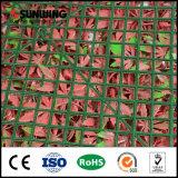 La rete fissa di plastica superiore del giardino di vendita DIY pianta la parete per i contesti
