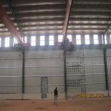 Het hete Verkopende Prefab Lichte Pakhuis van de Structuur van het Staal voor de Kongo