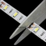 CRI 80 DC 12V SMD2835 LED 지구