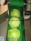 Cortadora vegetal automática FC-305, máquina de la picadora
