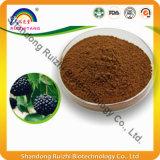 100% Pure 0.8% Eleutherosides Ginseng Sibérien PE