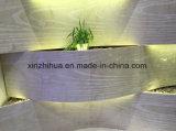Mattonelle di marmo naturali del marmo di effetto delle mattonelle 3 D