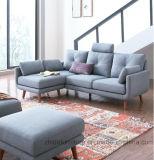 Софа ткани высокого качества установленная для квартиры