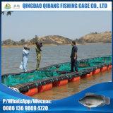 Tiefes Seefischzucht-Rahmen