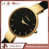 Moda Alloy Quartz Stainless Steel Back Watch com Unisex