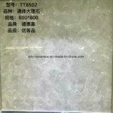 Tegel van de Vloer van de Tegel van het Lichaam van de Verkoop van Foshan de Goede Volledige Marmeren