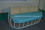 Neue Entwurfs-Rattan-und Aluminium-Garten-Sofa-Sets (TG-8003)