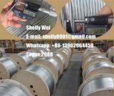 Ehs a galvanisé le brin ASTM A475, ASTM de fil d'acier des 363, ASTM B498, BS183 BS443, le CEI, norme de GB