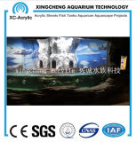 Precio material de acrílico transparente grande del proyecto de Fishbowl