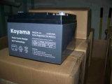 12V 24ah UPS/Surge 프로텍터를 위한 깊은 주기 젤 건전지