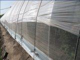 Противомоскитные сетки ткани против насекомых-Net