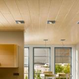 Panneaux en PVC pour le plafond et décoration murale