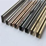 Il supporto di vetro su ordinazione dell'acciaio inossidabile profila il fornitore