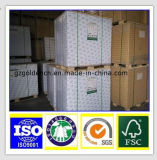 170GSM-400GSM witte Raad Fbb