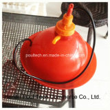 La couche d'équipement de poulet buveur de l'eau