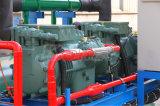 Máquina de hielo del tubo del control del PLC de Siemens 10tons/Day