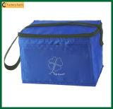 Выдвиженческой мешки еды изолированные поставкой более холодные (TP-CB239)