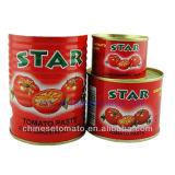 Bolsita pasta de tomate con alta calidad del surtidor de China