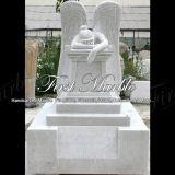 رخاميّة حجارة صوّان نصب تذكاريّ [متريإكس] كراره شاهد القبر [مم-501]