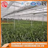 Serra di vetro di profilo di alluminio commerciale del blocco per grafici d'acciaio per la verdura