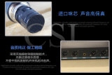 Fernbetrieb-Frequenz-Ausgleichungs-Fachmann UHFradioapparat-Mikrofon