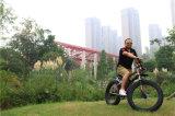 脂肪質のバイクのFramecarbonの脂肪質のバイクフレーム