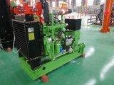 30kw Biogas Genset/Motor-Export des Gas-Generator-Set-4105 nach Russland