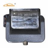 11091302 het Licht van de Nummerplaat Aelwen voor Auto