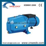 Ménage Self-Priming jet Pompe à eau électrique (JET-100A)