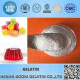 Gelatina ósea / gelatina para la aplicación de alimentos