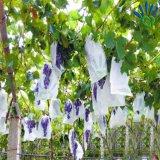 PP закрутили Bond Nonwoven ткань для мешков плодоовощ виноградины