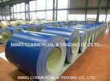 Bobina de acero cubierta PPGL/PPGI/Color de /Pre-Painted de la calidad de la prima del precio de fábrica