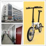 Lithium gefaltetes elektrisches Fahrrad 16inch mit Sattel-Gefäß BMS (16F01)