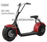Scooter eléctrico Harley de dos ruedas de 1000W