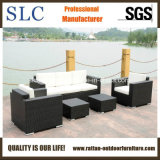 Outdoor canapé en rotin set /Meubles en rotin canapé/Canapé de jardin Set (SC-B9508)