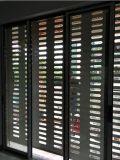 Aluminio Silenciado Roller puerta del obturador (BH-SD16)