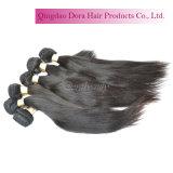 Trama brasileira do cabelo humano do vison no Weave natural conservado em estoque do cabelo do Virgin