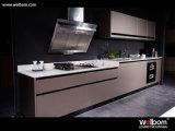 Ce мебели кухни нового лака Ta самомоднейший