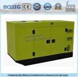 Generador eléctrico diesel de las marcas de fábrica famosas de la venta 12kw 15kVA de la fábrica de la potencia