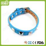 Colar da cinta do rebite da alta qualidade, produtos do animal de estimação