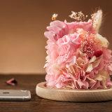 Creatieve Bloemen voor de Gift van Kerstmis van de Verjaardag van de Vakantie